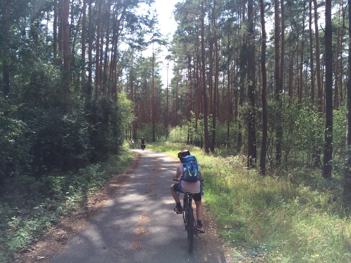 Radweg Waldgebiet Schwarze Elster